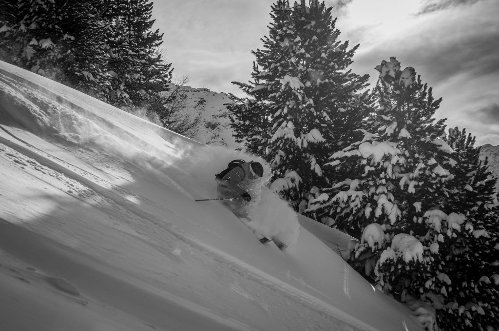 snow verbier
